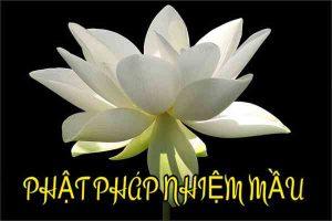 Phật pháp nhiệm màu nên hiểu như thế nào cho đúng