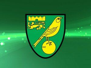 Câu lạc bộ bóng đá Norwich City – Lịch sử, thành tích của CLB