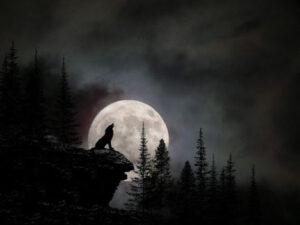 Nằm mơ thấy trăng có ý nghĩa gì điềm báo tốt hay xấu
